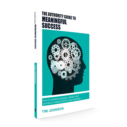 The Authority Guide to Meaningful Success: How to combine purpose, passion and promise to create profit for your business